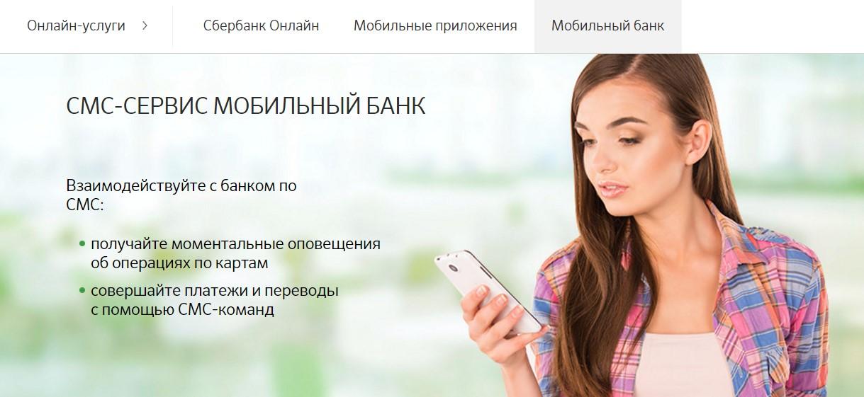 Сервис через интернет